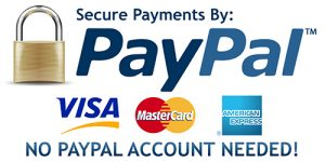Secured Payment Via Paypal